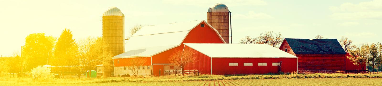 Your-Farm-Header